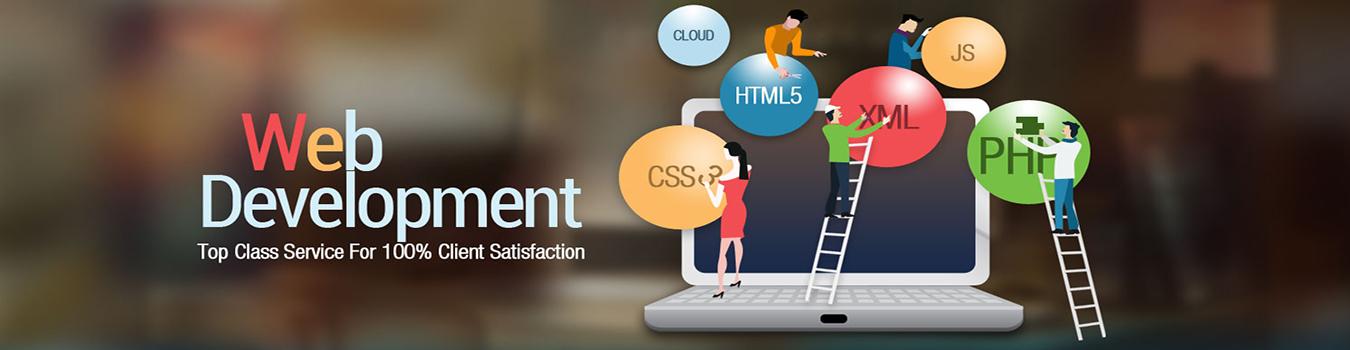 Services - Web Development and Website Designing Company In Delhi