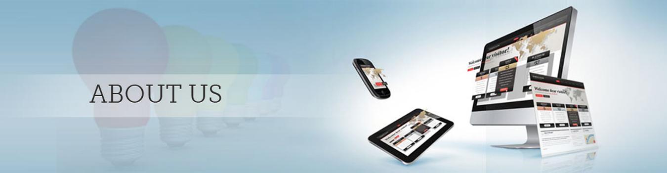 About Us - Adisoftronics - Web Development Company