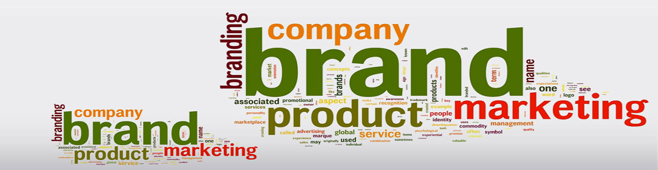 SalesBoss - Web Development Company In Delhi